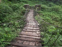 Wooden Bridge - Annapurna region